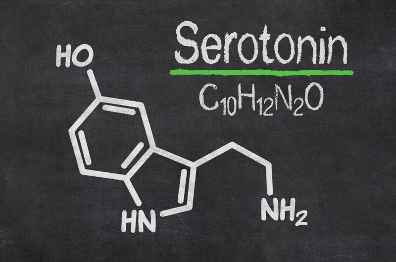 12 продуктов, повышающих уровень серотонина для настроения