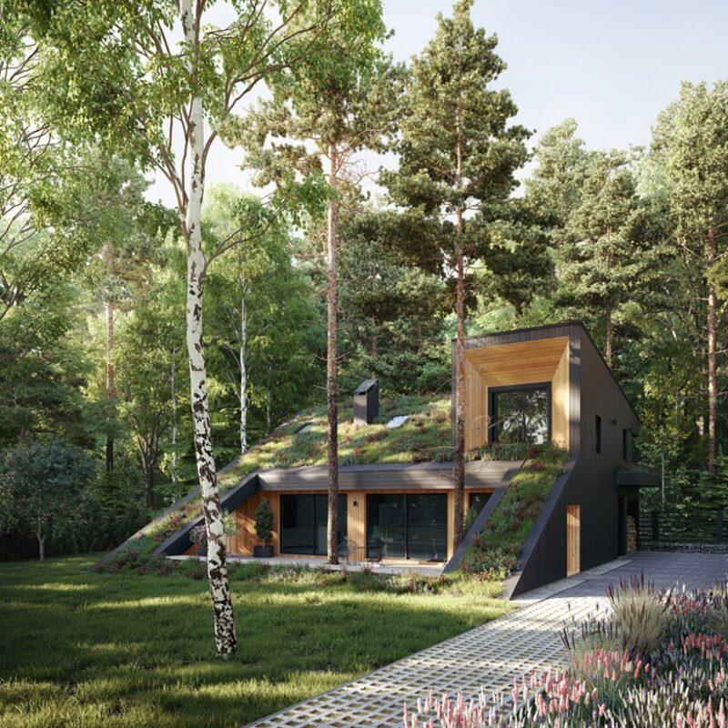 Дом с зеленой крышей от студии Snegiri Architects